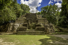 Tempio della maschera, rovine di Lamanai Fotografia Stock