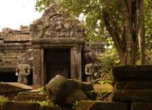 Tempio di Angkorian nella giungla Immagine Stock