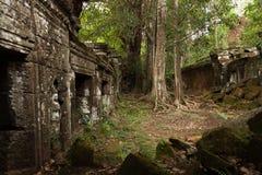 Tempio di Angkorian nella giungla Fotografie Stock