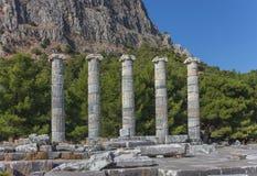 Tempio di Athena Polias 1 Immagine Stock Libera da Diritti
