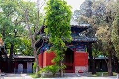 Tempio di Confucio, Pechino, Cina fotografia stock libera da diritti