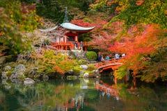 Tempio di Daigo-ji con gli alberi di acero variopinti Immagini Stock Libere da Diritti