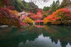 Tempio di Daigo-ji con gli alberi di acero variopinti in autunno, Kyoto Fotografie Stock Libere da Diritti