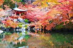 Tempio di Daigo-ji con gli alberi di acero variopinti in autunno, Kyoto, Japa Immagine Stock