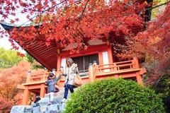 Tempio di Daigo-ji con gli alberi di acero variopinti in autunno, Kyoto, Japa Fotografie Stock
