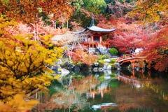 Tempio di Daigo-ji con gli alberi di acero variopinti in autunno, Kyoto, Japa Fotografia Stock