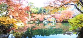 Tempio di Daigo-ji con gli alberi di acero variopinti in autunno, Kyoto, Japa Fotografia Stock Libera da Diritti