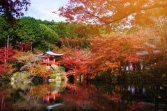 Tempio di Daigoji all'autunno a Kyoto Immagine Stock