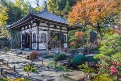 Tempio di Hasedera in KamakuraKAMAKURA, GIAPPONE - 24 novembre: Hase Fotografie Stock