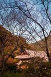 Tempio di Hasedera, Sakurai, Nara Fotografie Stock