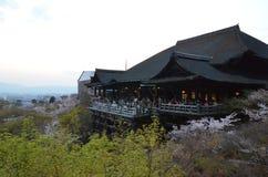 Tempio di Kiyomizu-dera nella sera sulla primavera Immagine Stock