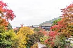 Tempio di Kiyomizu-dera o di Kiyomizu nella stagione di autum a Kyoto, Giappone Immagini Stock Libere da Diritti