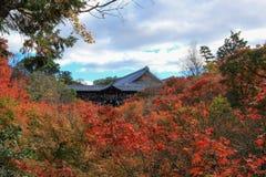 Tempio di Kotoin in autunno Fotografia Stock