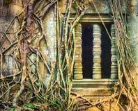 Tempio di Mealea del tappo o di Beng Mealea La Cambogia cambodia immagine stock