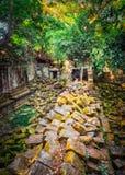 Tempio di Mealea del tappo o di Beng Mealea La Cambogia cambodia immagini stock