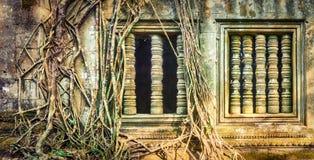 Tempio di Mealea del tappo o di Beng Mealea La Cambogia cambodia fotografie stock