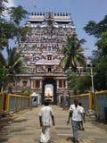 Tempio di Nataraj Fotografie Stock Libere da Diritti