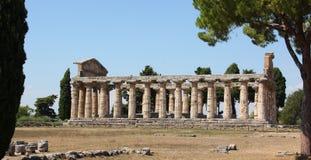 Tempio di Paestum Immagini Stock