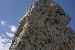 Tempio di Skorba di tum   struttura megalitica gigante fotografia stock