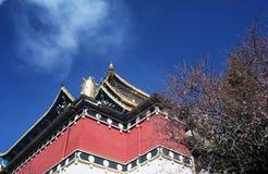 Tempio di stile del Tibet in Shangrila, Cina Fotografie Stock Libere da Diritti