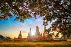 Tempio di Wat Chaiwatthanaram nel parco storico di Ayuthaya, Tailandia Immagine Stock Libera da Diritti