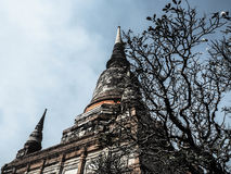 Tempio di Wat Yai Chaimongkol a ayutthaya immagini stock