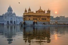 Tempio dorato di Amritsar - Pubjab - l'India Immagine Stock
