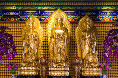 Tempio dorato di Chainese Buddha Leng Noei Yi 2 Fotografia Stock Libera da Diritti