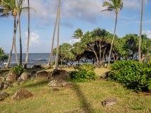 Tempio hawaiano antico, o Heiau, Fotografie Stock