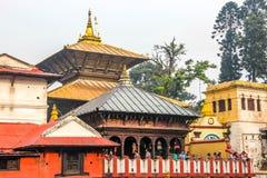Tempio Kathmandu, Nepal di Pashupatinath fotografia stock libera da diritti