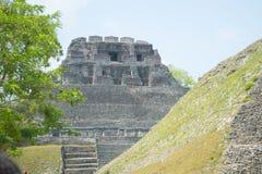 Tempio maya immagini stock libere da diritti