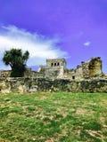Tempio maya antico Immagine Stock