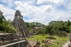 Tempio maya I Gran Jaguar al parco nazionale di Tikal - Guatemala immagine stock