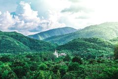 Tempio in mezzo alla foresta fotografie stock libere da diritti