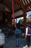 Tempio Nara Japan di Kofoku-ji Fotografie Stock Libere da Diritti
