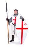 templar的骑士 免版税库存图片
