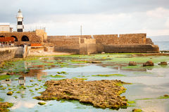 Templar Fortress in Acre Stock Image