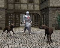 Templar Knight and Guard Dogs at a Castle Gate. Digital render of a Mediaeval Templar Knight guarding a castle gateway with the help of three large guard dogs Stock Photo