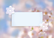 Template with abstract cherry blossom Stock Photography