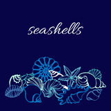 Template of art line of seashells on blue background. Vector Stock Photography