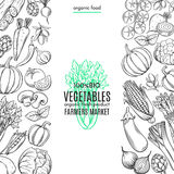 Template borders with hand drawn vegetables Royalty Free Stock Photos