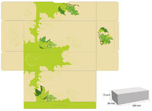 Template for box design. With grapevine Stock Photos