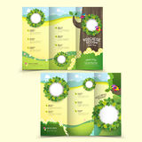 Template of brochure design Royalty Free Stock Images