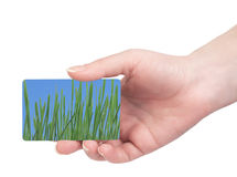 Template business cards in his hand Royalty Free Stock Image