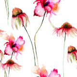 Template for card with Gerber and Poppy flowers. Watercolour illustration Royalty Free Stock Photo