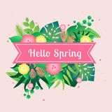 Template card hello spring with tropical leafs vector illustration