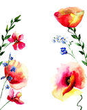 Template for card with Red Poppies flowers. Watercolor illustration Royalty Free Stock Photo