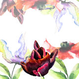 Template for card with Tulips and Poppy flowers Royalty Free Stock Image