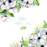 Template card with watercolor white anemones, floral design for Mother`s day. Template card with watercolor white anemones, hand drawn on a white background Stock Photography