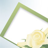 Template card with yellow roses Royalty Free Stock Image
